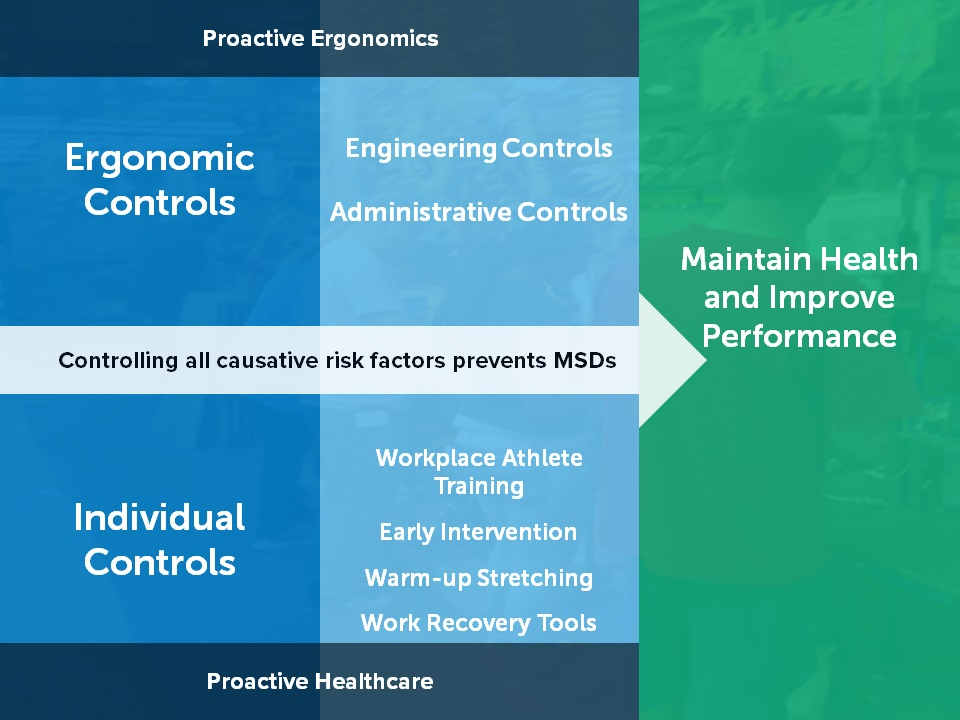 msd prevention Checklist: msd-prevention program the ergonomics report 01st august, 2004 this article originally appeared in the ergonomics report on 2004-08-01.